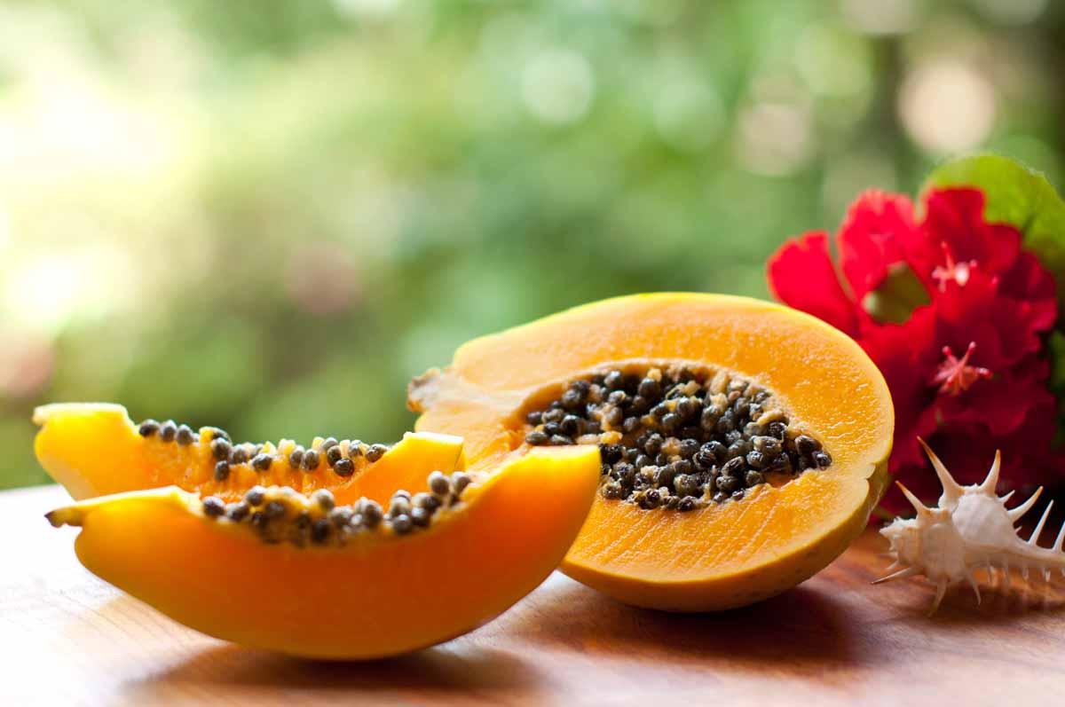 A cosa serve la papaya fermentata