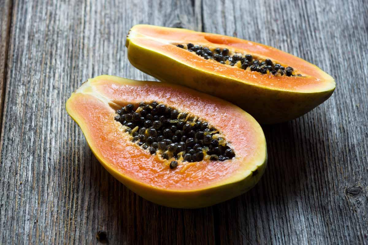 Controindicazioni della papaya fermentata