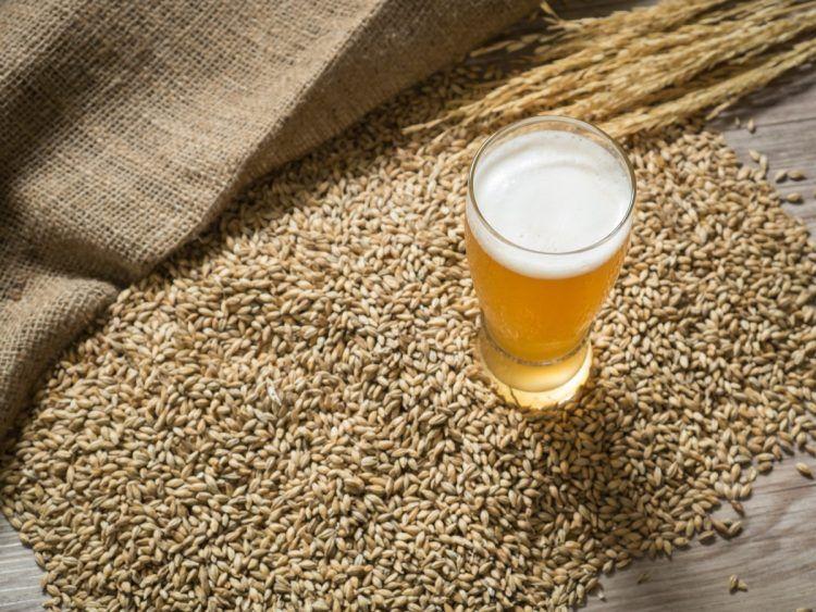 come perdere peso bevendo lievito di birra