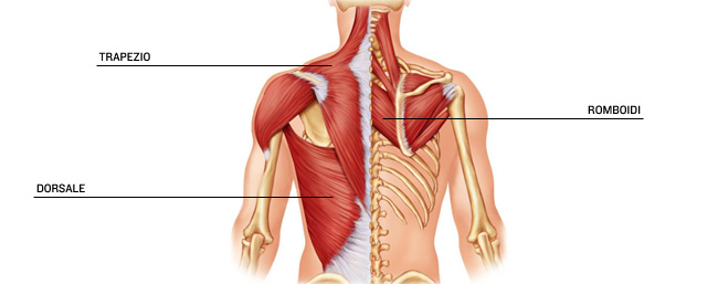 Le punture più care da osteochondrosis