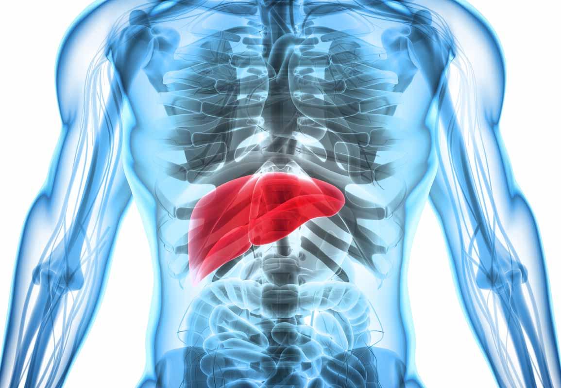 Quando e come depurare il fegato: la sintomatologia che ci indica quando è necessario