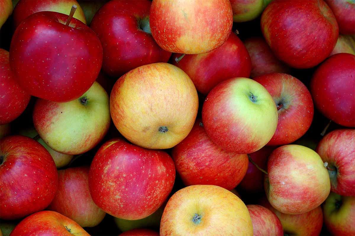 Cosa dobbiamo fare per bruciare le calorie di 100 grammi di mele?