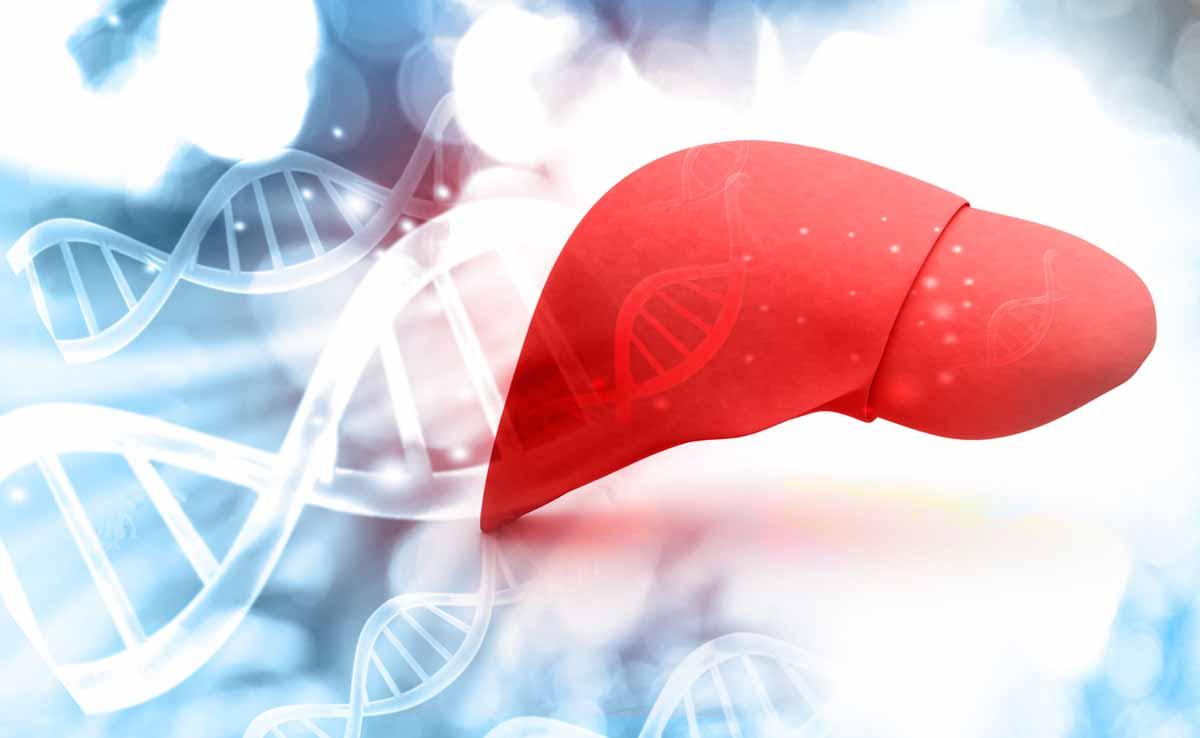 Il fegato steatosico può causare danni a livello fisico?