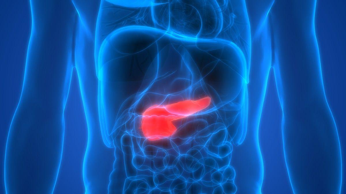 fegato steatosico può causare danni