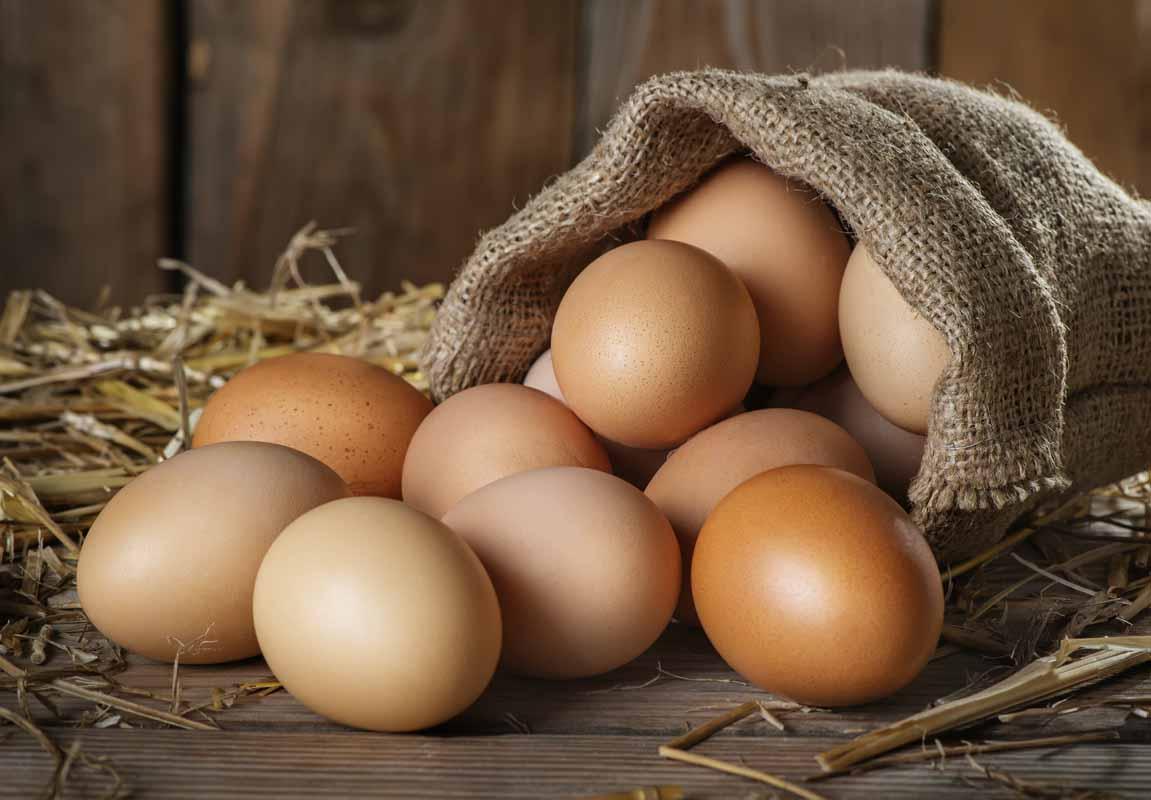 Alimenti che contengono più vitamina D