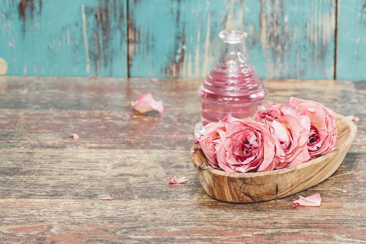 L'olio di rosa mosqueta puro e le sue applicazioni