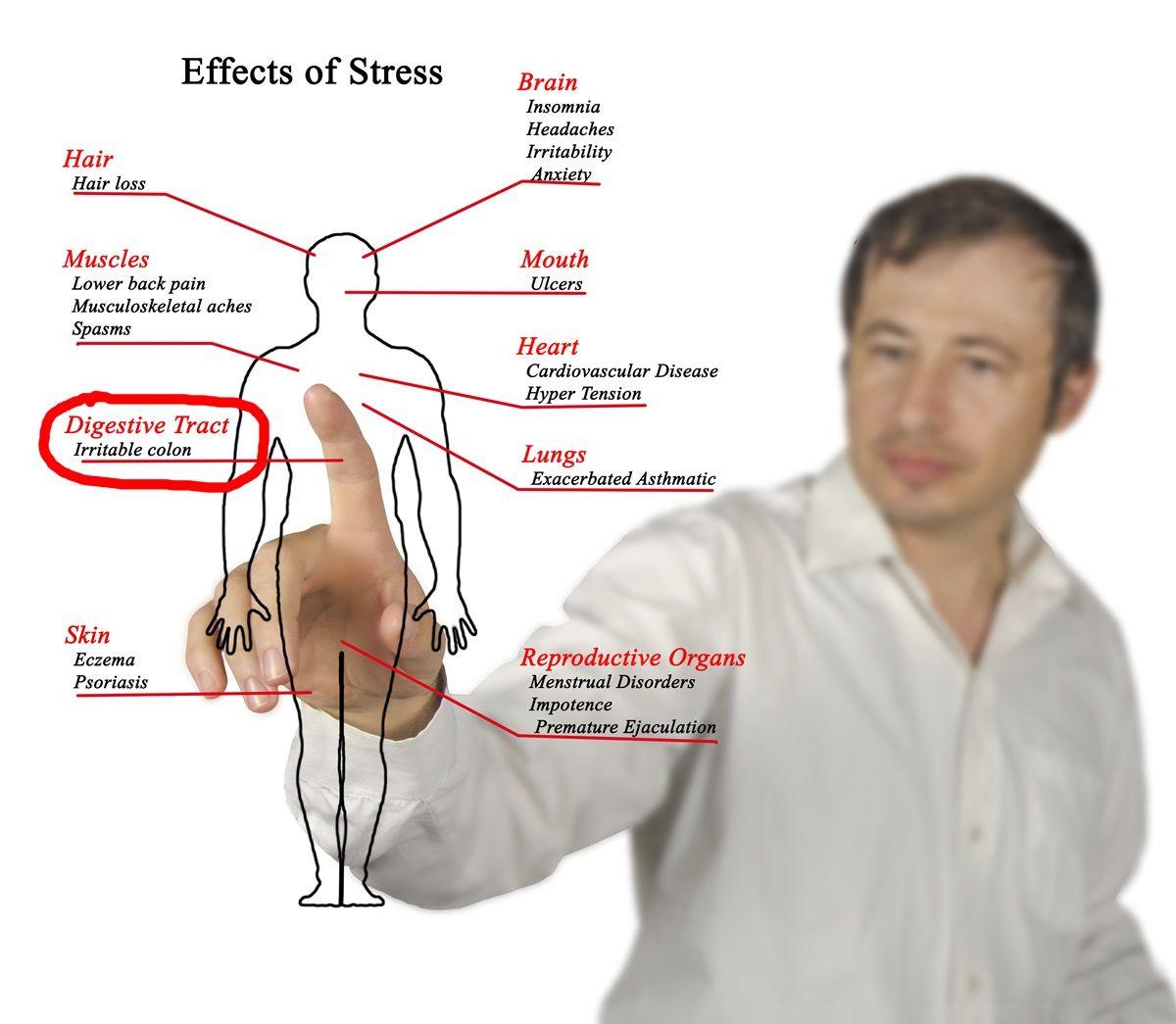 Sindrome del colon irritabile o colite: sintomi, dieta ...