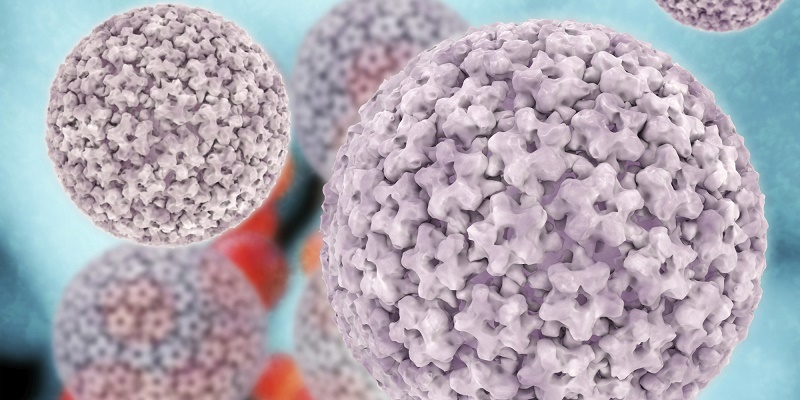 Papilloma virus - 3d rendered illustration