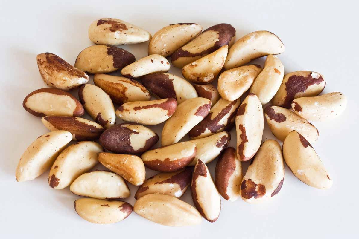 Che cosa sono le noci brasiliane e quali le sostanze nutritive in esse contenute