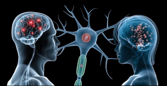 Guide e consigli archivi inran - Neuroni specchio empatia ...