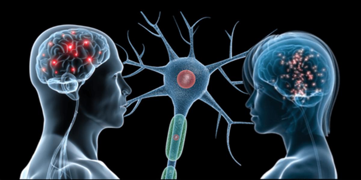 Neuroni specchio cosa sono e quali funzioni hanno - Neuroni specchio empatia ...
