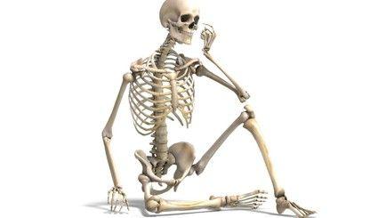 scheletro seduto