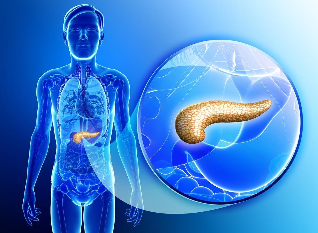Pancreatite cronica cause