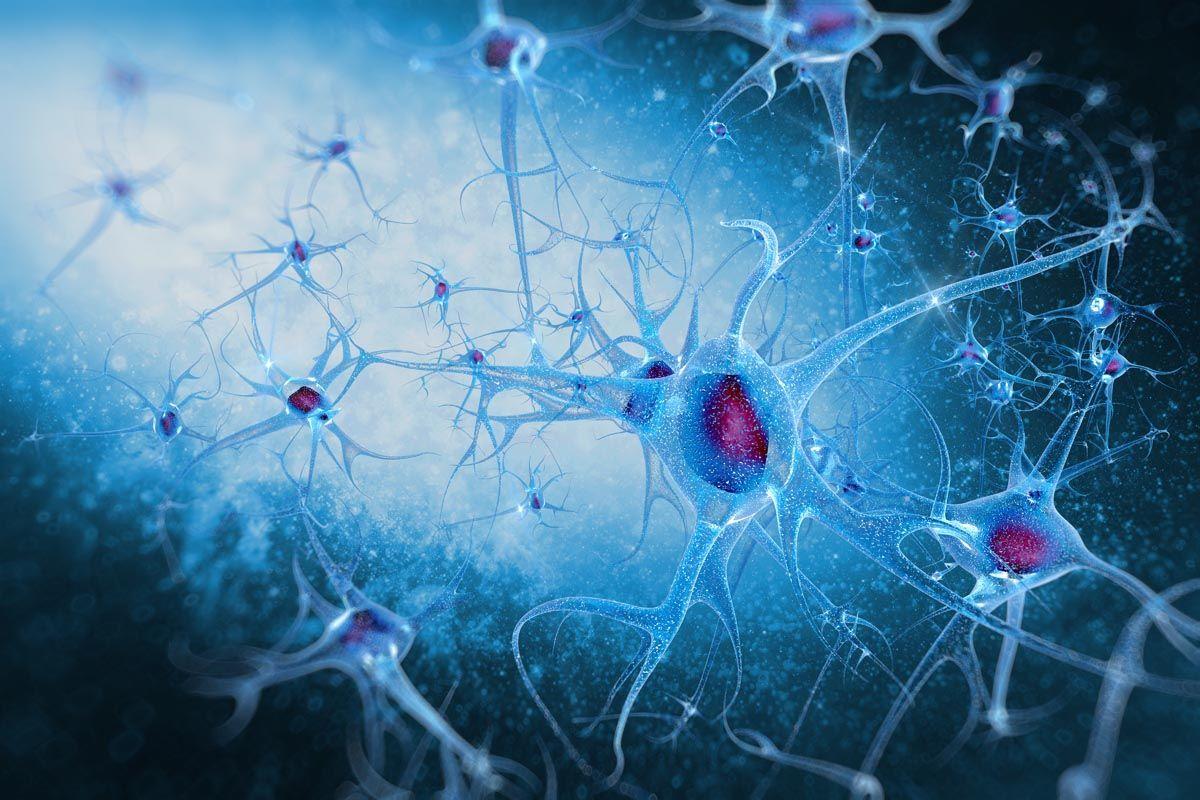 Nervo frenico patologie