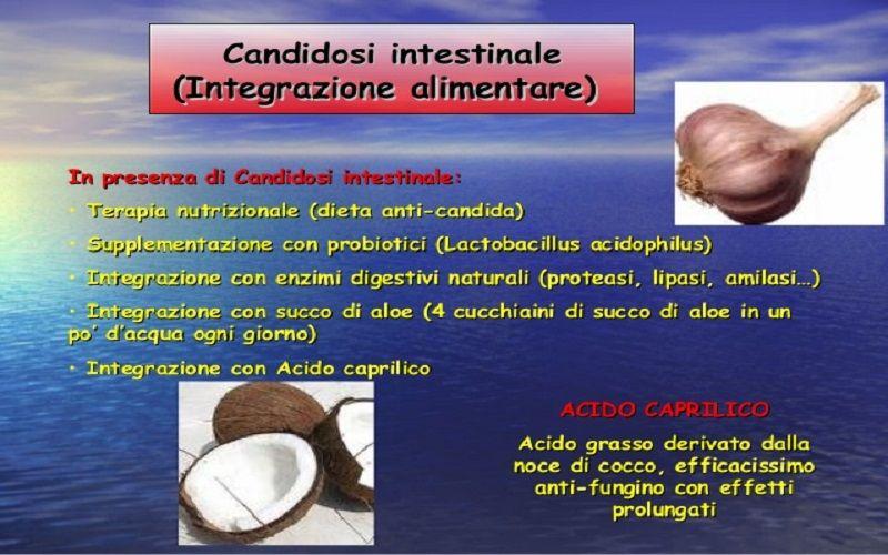 candida intestinale