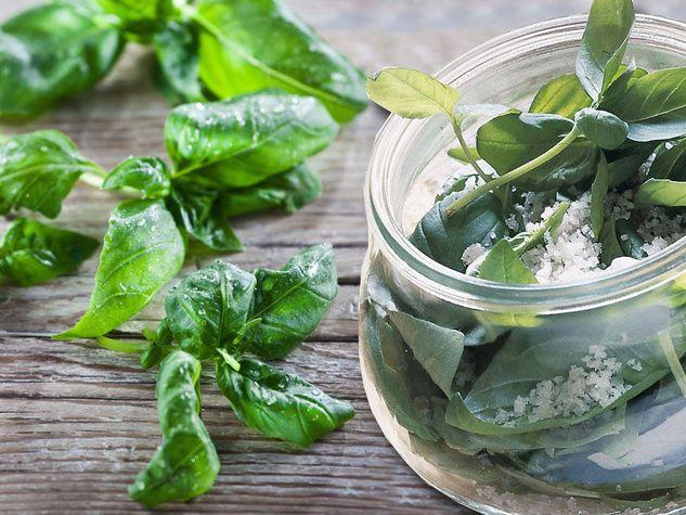 Come conservare il basilico per averlo a disposizione sempre - Come coltivare il basilico in casa ...