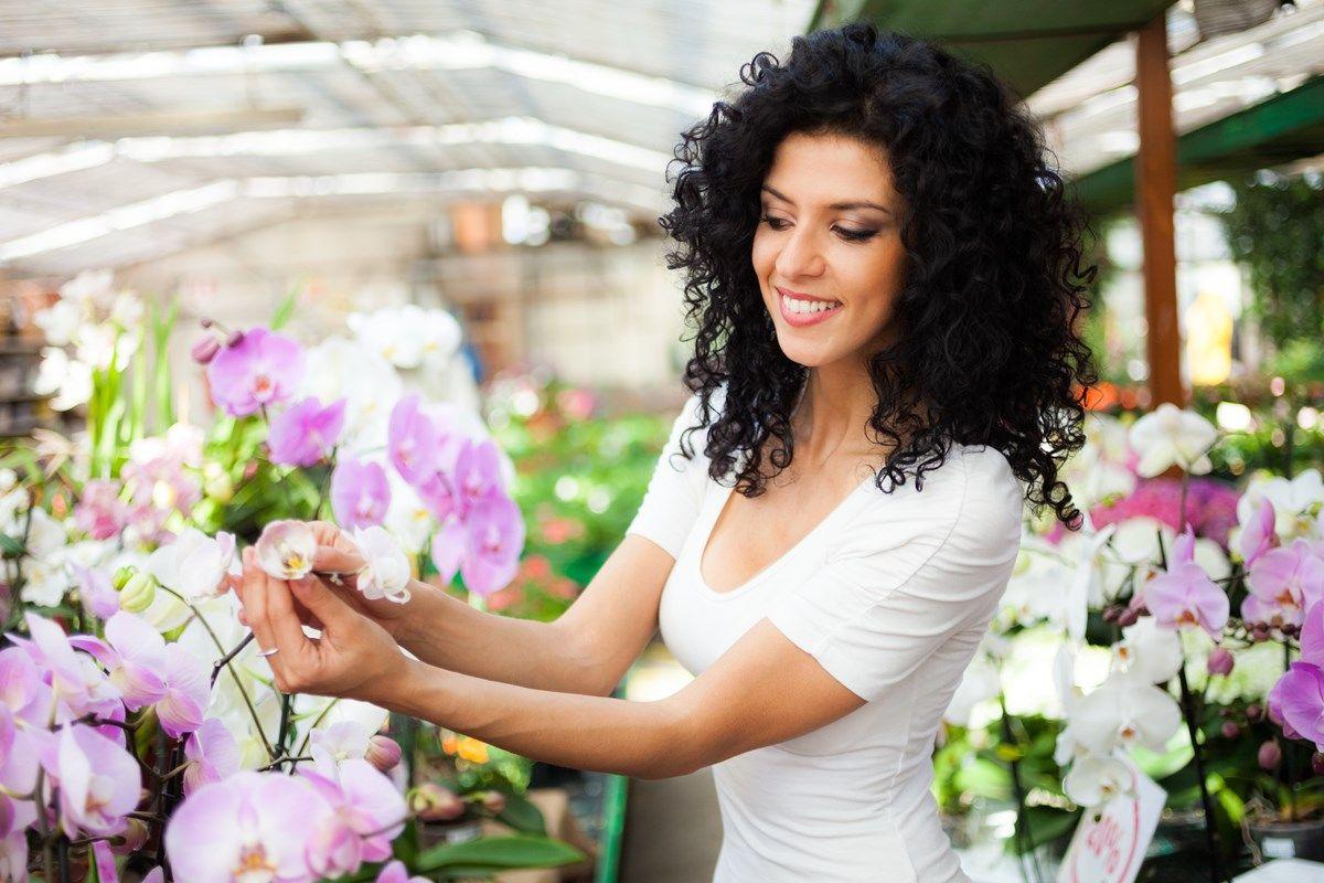 come curare le orchidee: la crescita
