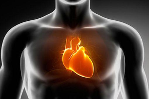 cuore_6