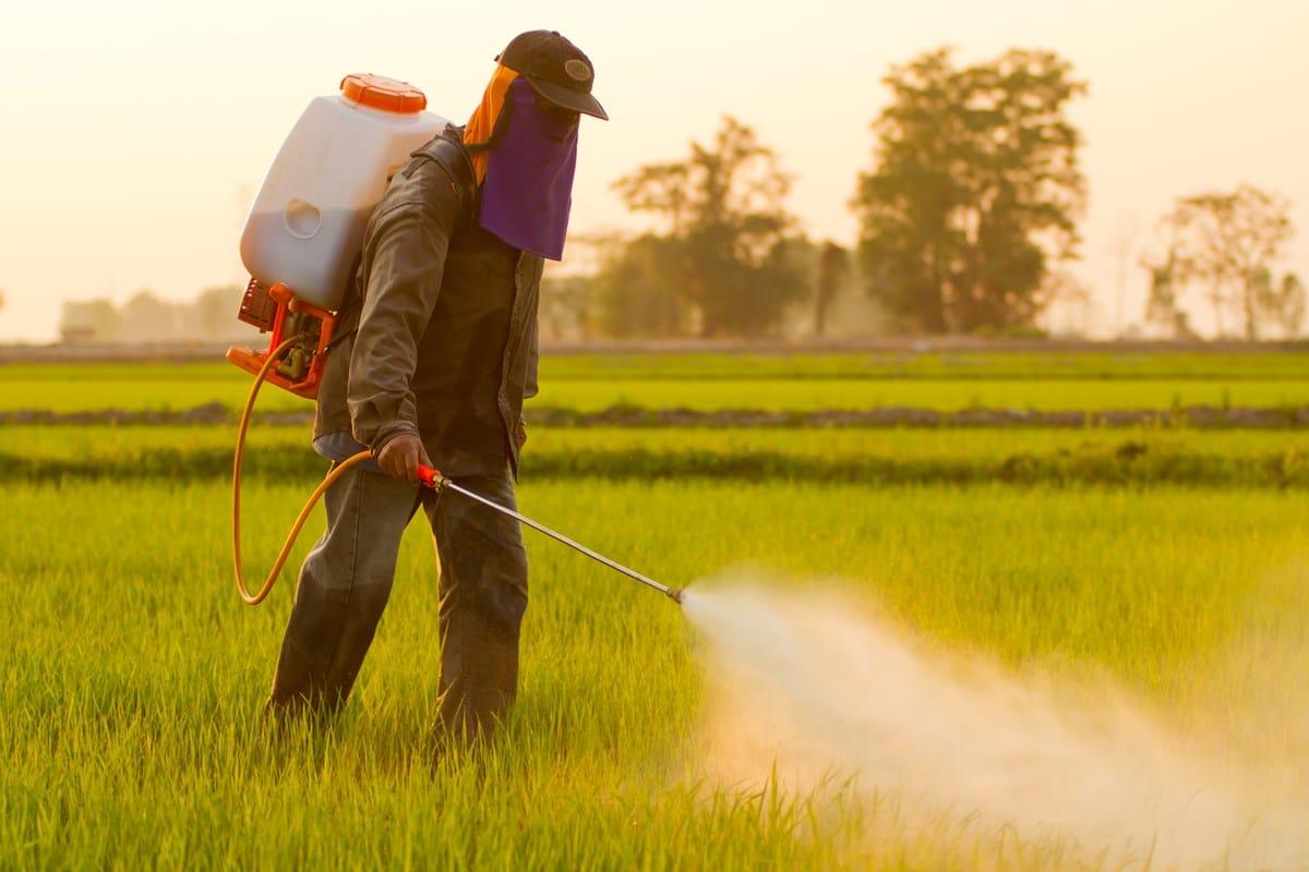 diserbante naturale: i rischi degli erbicidi chimici
