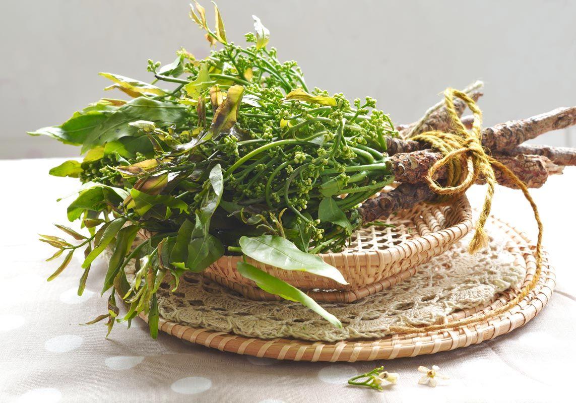 Olio di neem e le sue azioni benefiche