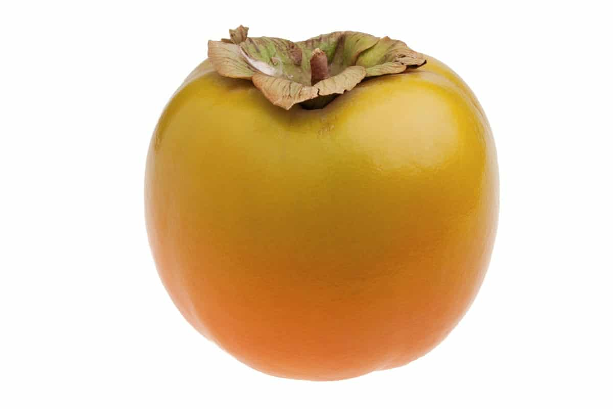 Caco mela favorisce la digestione
