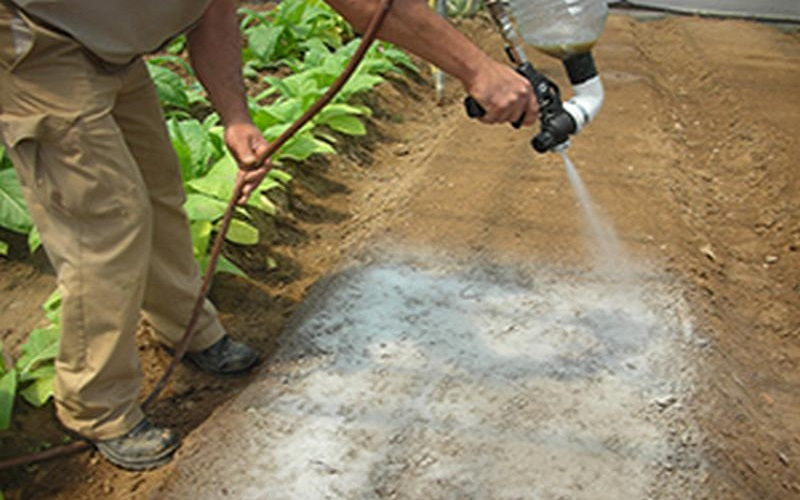 Pacciamatura le differenze tra l 39 orto e il giardino - Telo tessuto non tessuto giardino ...