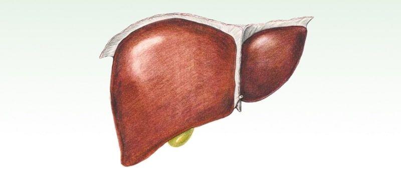 Calcoli al fegato
