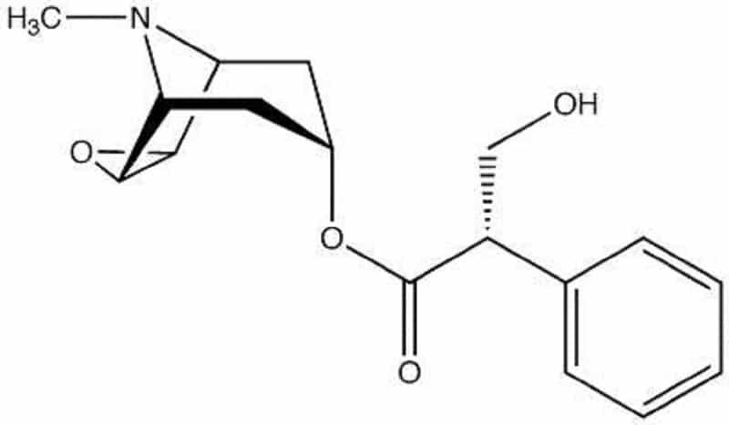 scopolamina