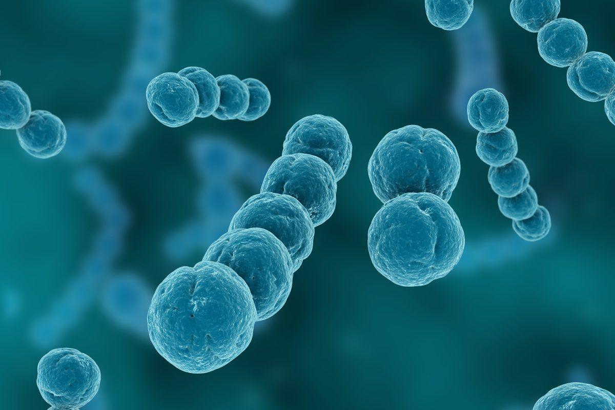 anomalie dei batteri intestinali