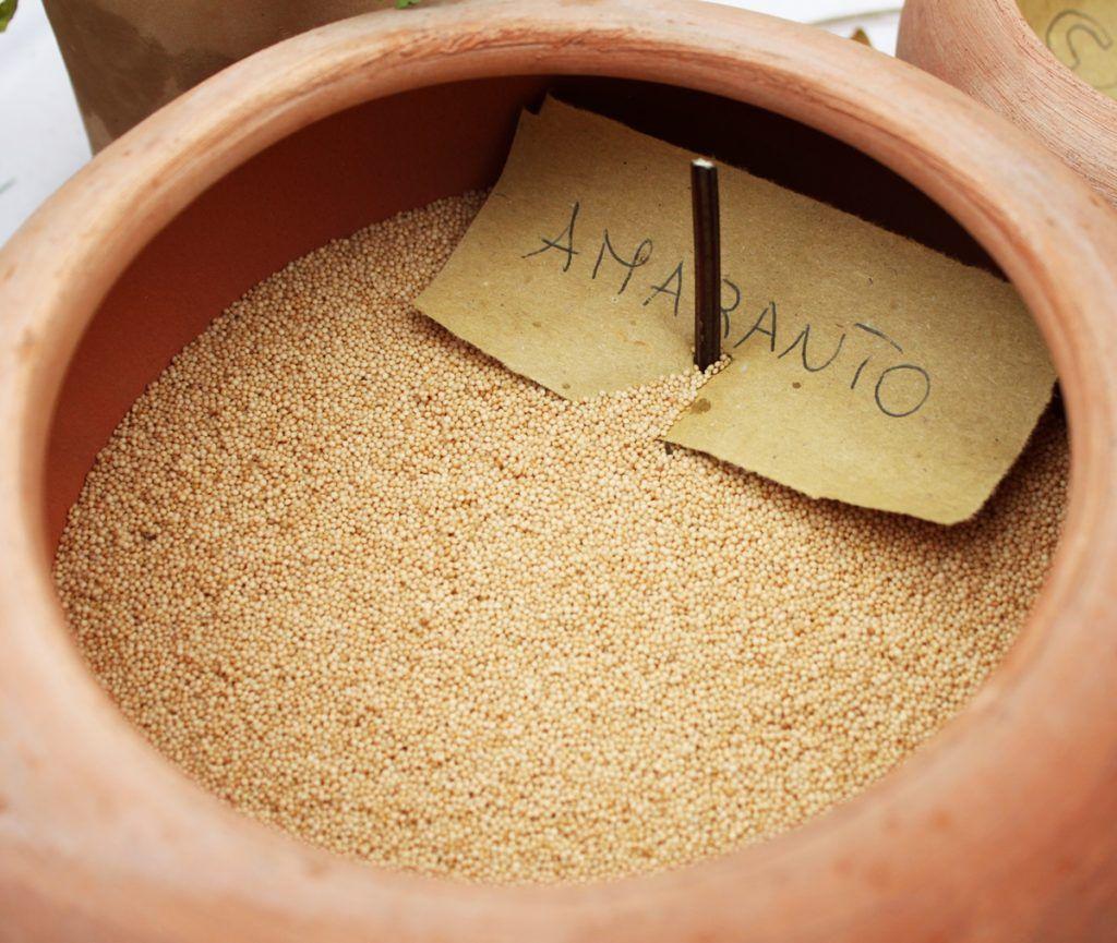 Amaranto: proprietà nutrizionali