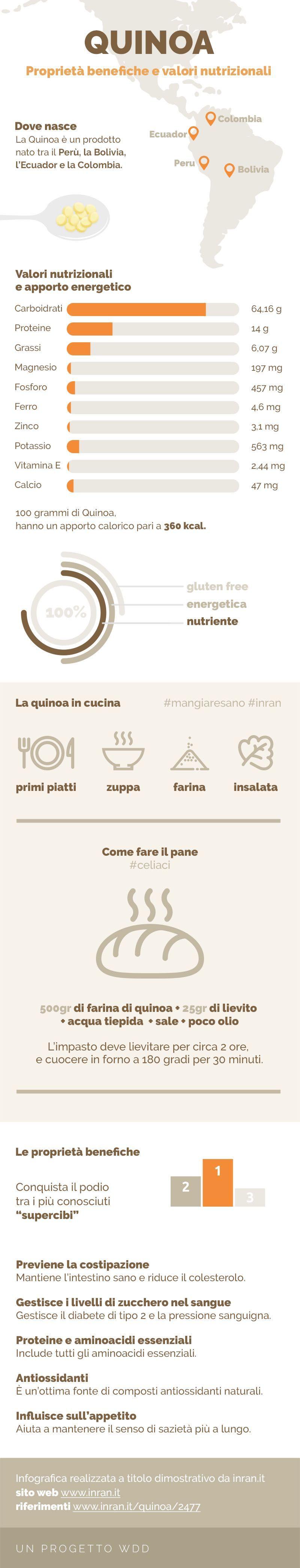 infografica sulla quinoa