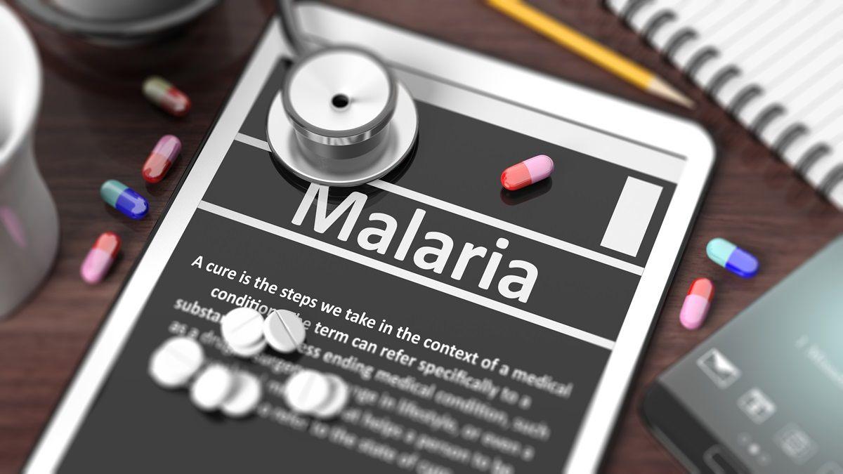Cos'è la malaria
