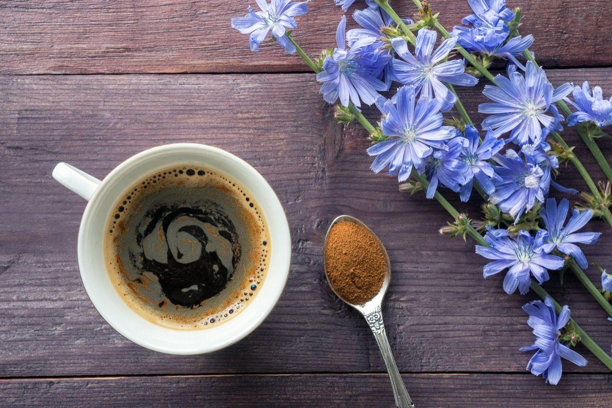 Come si prepara il caffè di cicoria