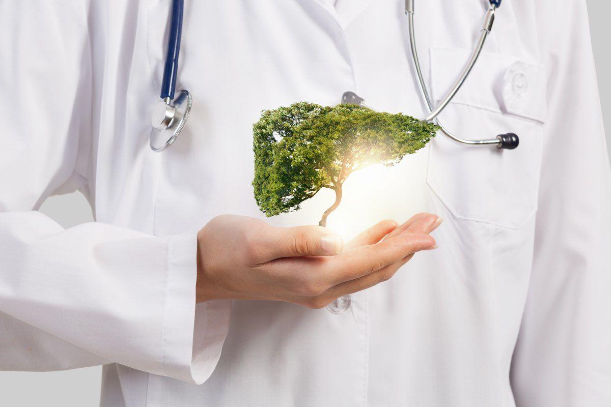 fegato cure naturali e non