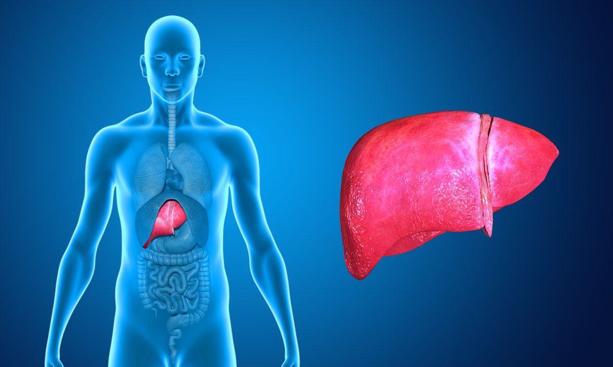 principali sintomi legati all'epatocarcinoma