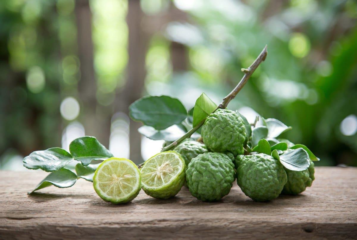 Qualità e benefici del bergamotto