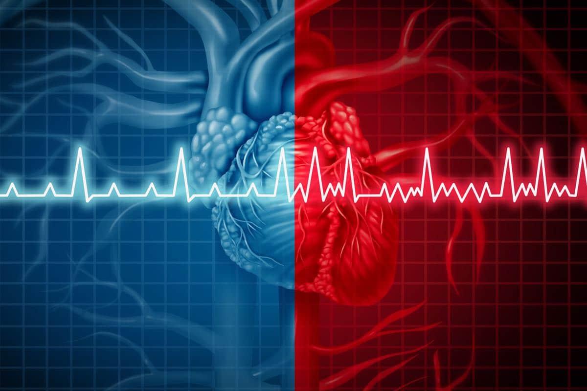 Quali fattori influenzano la frequenza cardiaca