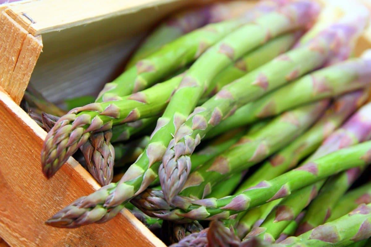 odore degli asparagi