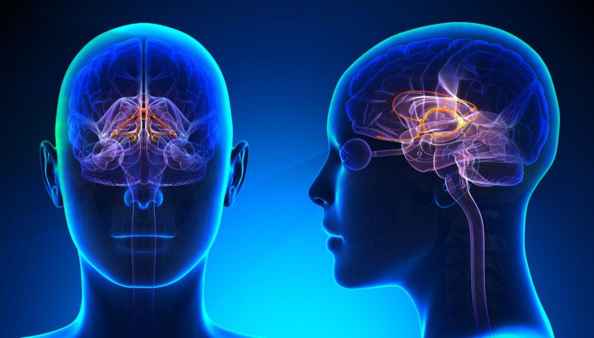 Dopamina e dipendenze