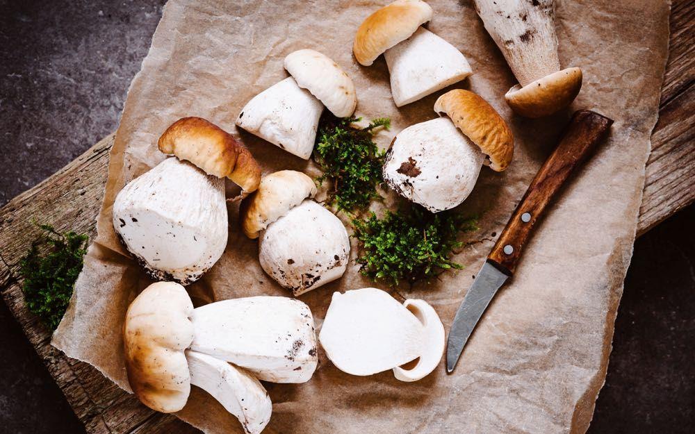 Preparare i funghi porcini