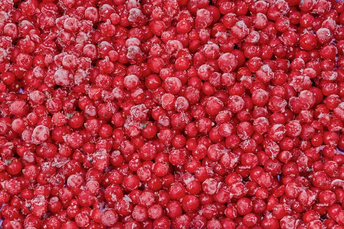Mangiare i mirtilli rossi