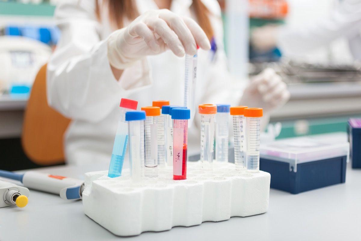 Qual è l'uso terapeutico delle immunoglubine e qual è la loro modalità di somministrazione