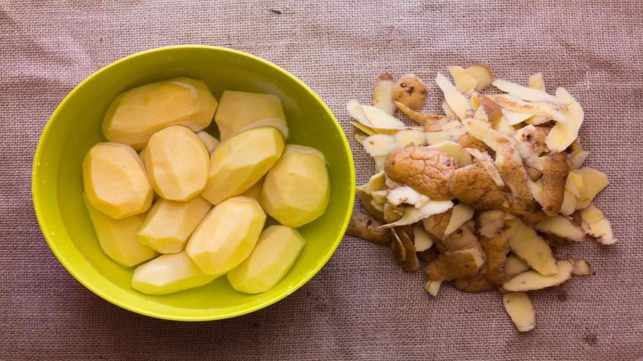 bucce patata