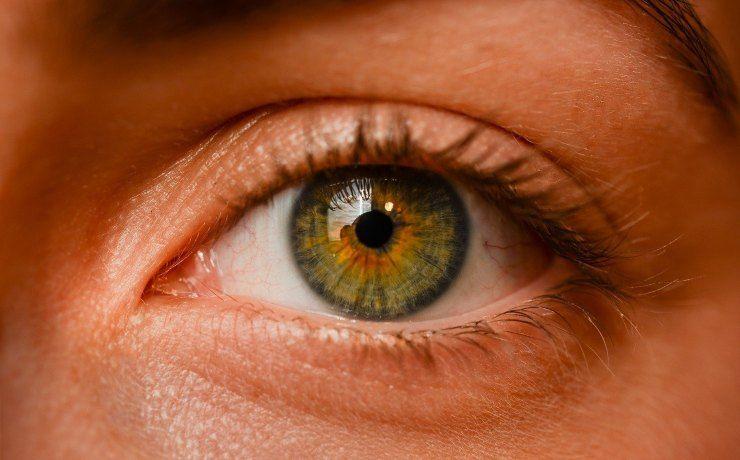 dieta alleata della vista