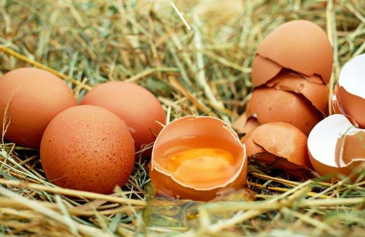uova in gravidanza fanno male