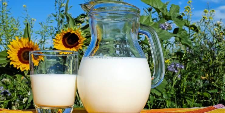 latte proprietà benefici