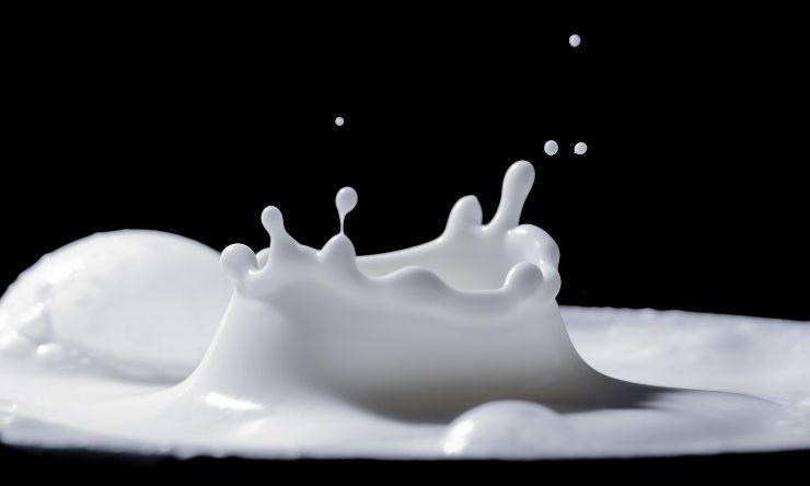 latte dieta