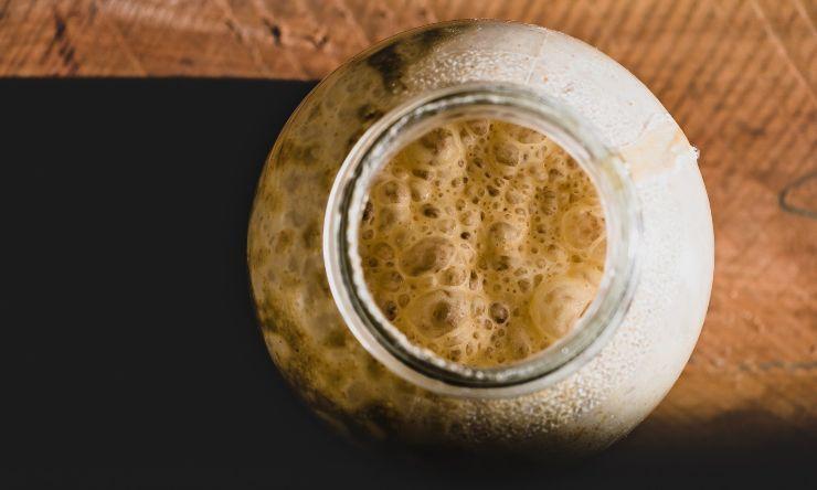lievito di birra in vasetto