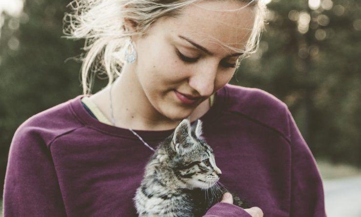 allergie ai gatti