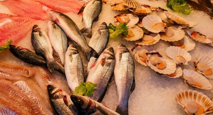 alimentazione pescetariana